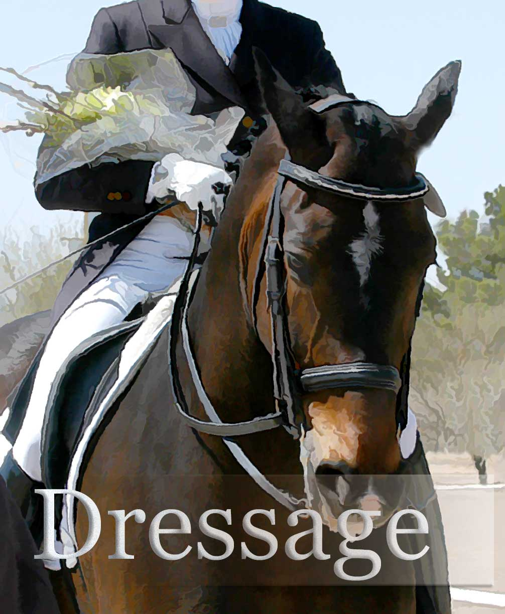 Arizona Dressage Association